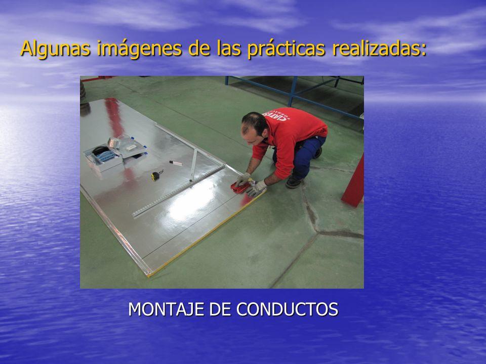Algunas imágenes de las prácticas realizadas: