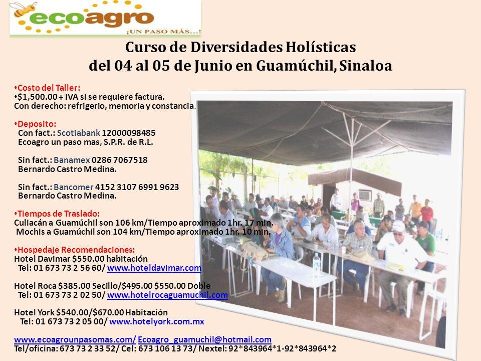 Curso de Diversidades Holísticas del 04 al 05 de Junio en Guamúchil, Sinaloa