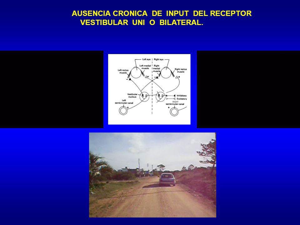 AUSENCIA CRONICA DE INPUT DEL RECEPTOR