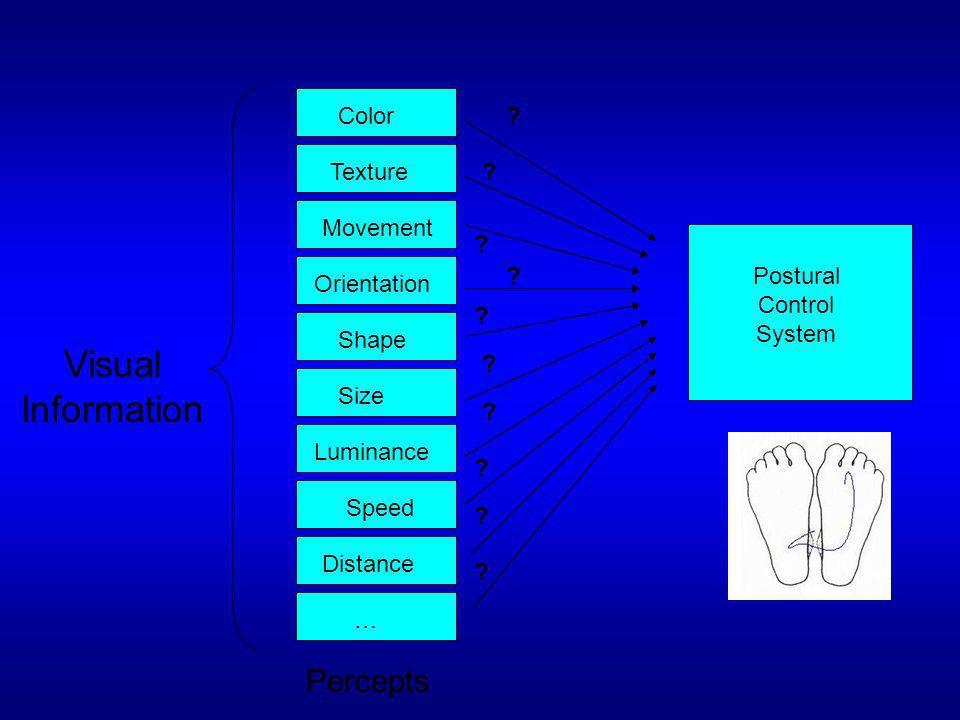 Postural Control System