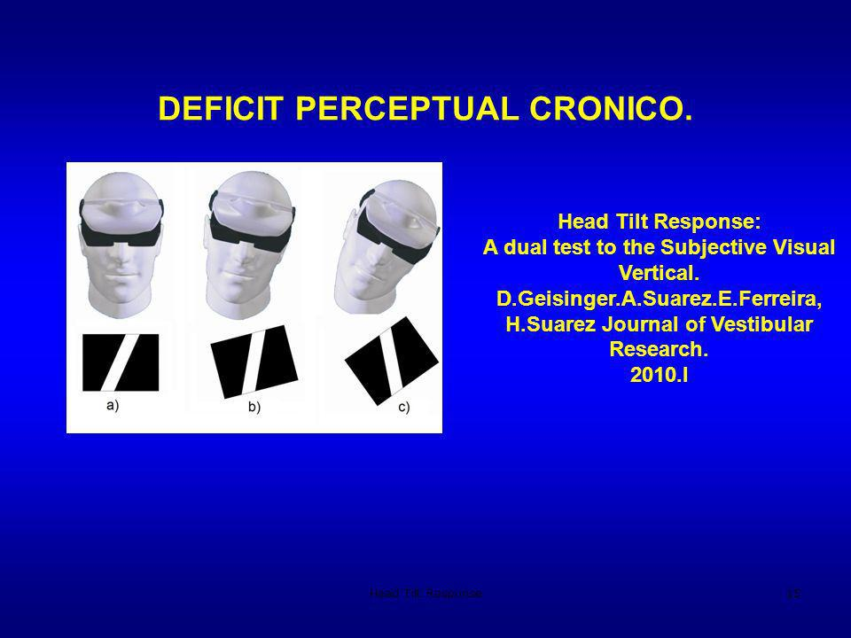 DEFICIT PERCEPTUAL CRONICO.