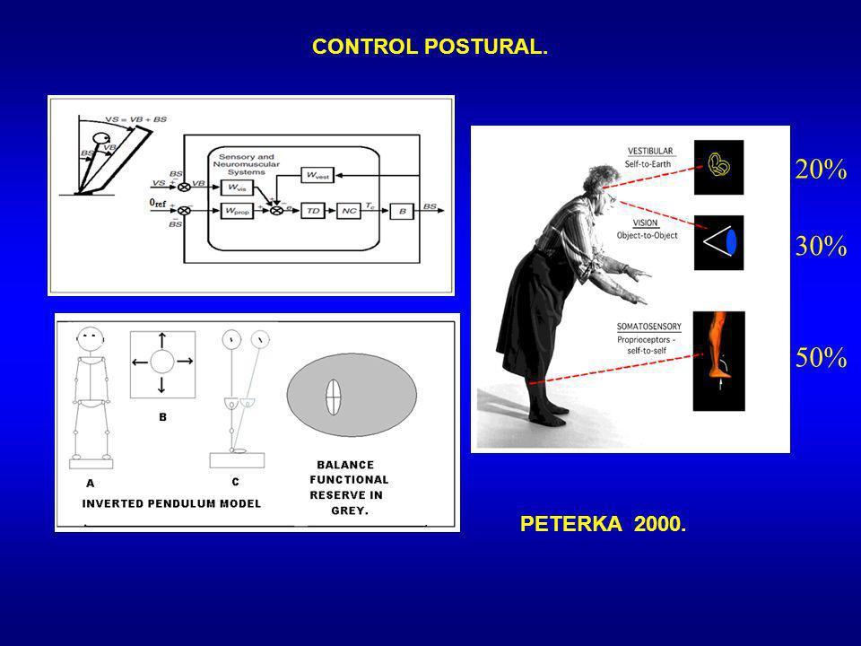CONTROL POSTURAL. 20% 30% 50% PETERKA 2000. 19