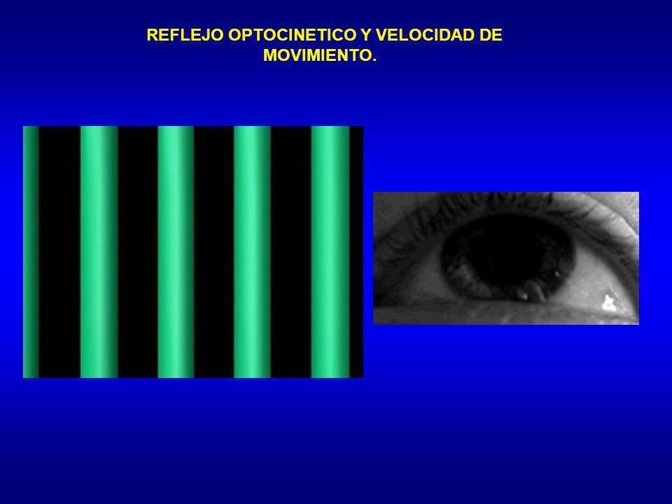 REFLEJO OPTOCINETICO Y VELOCIDAD DE