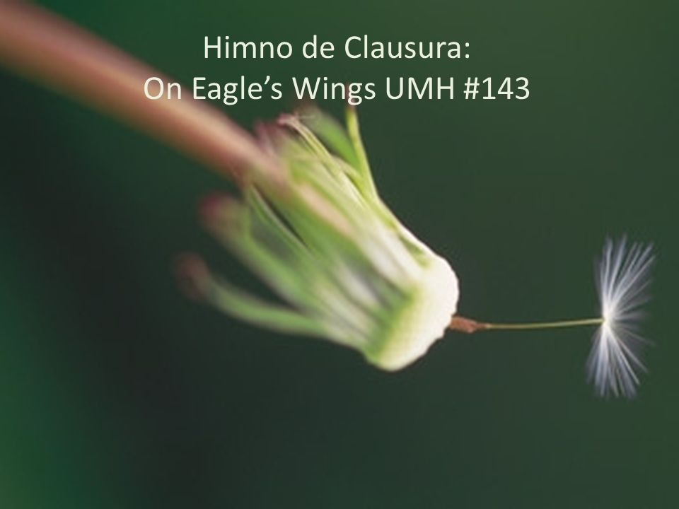 Himno de Clausura: On Eagle's Wings UMH #143 Module 3, Leader's Notes