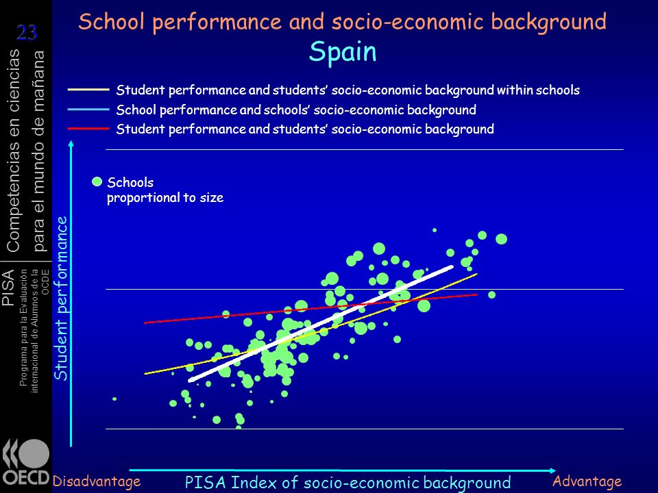 School performance and socio-economic background Spain