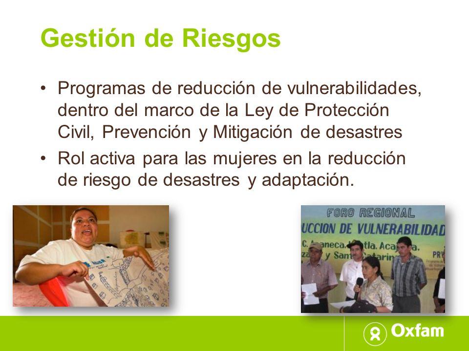 Gestión de Riesgos Programas de reducción de vulnerabilidades, dentro del marco de la Ley de Protección Civil, Prevención y Mitigación de desastres.