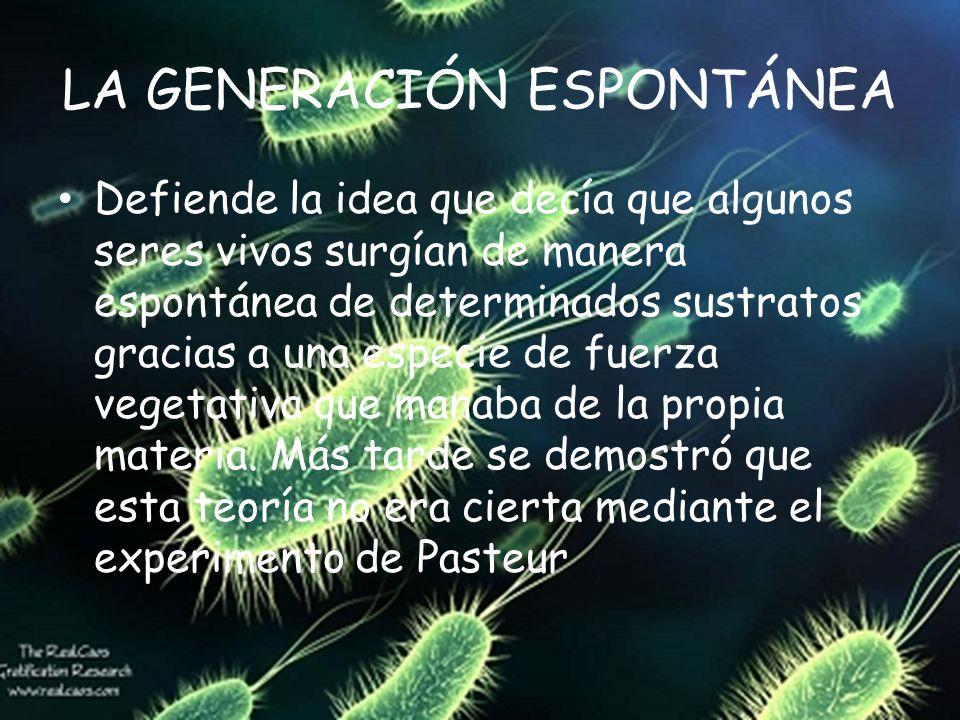 LA GENERACIÓN ESPONTÁNEA