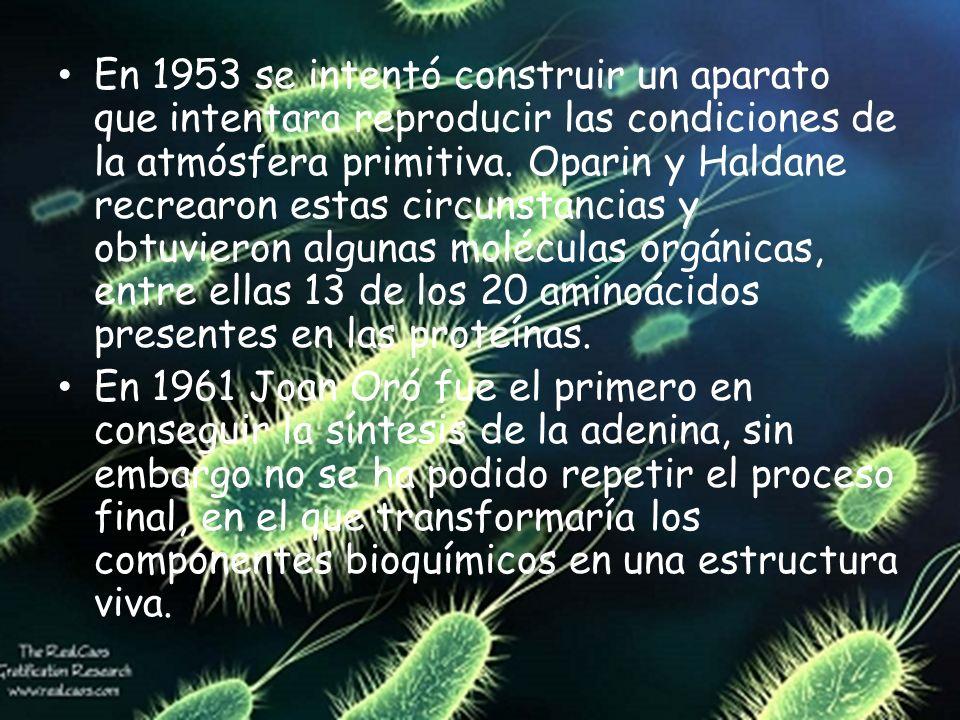 En 1953 se intentó construir un aparato que intentara reproducir las condiciones de la atmósfera primitiva. Oparin y Haldane recrearon estas circunstancias y obtuvieron algunas moléculas orgánicas, entre ellas 13 de los 20 aminoácidos presentes en las proteínas.