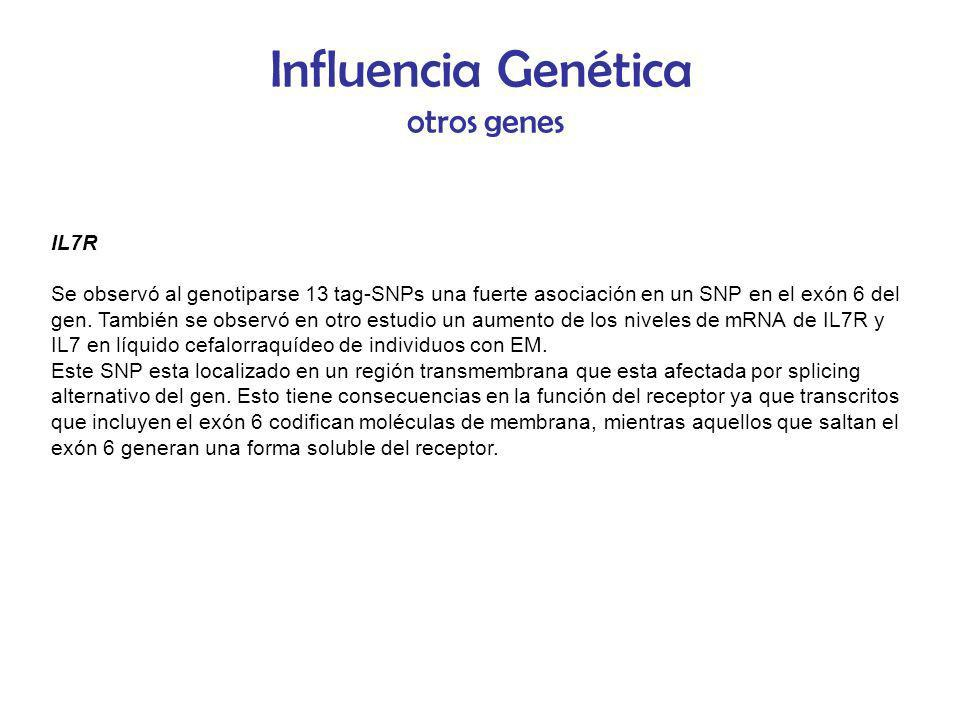 Influencia Genética otros genes