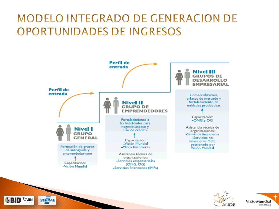 MODELO INTEGRADO DE GENERACION DE OPORTUNIDADES DE INGRESOS