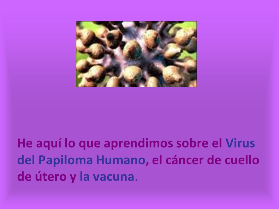 He aquí lo que aprendimos sobre el Virus del Papiloma Humano, el cáncer de cuello de útero y la vacuna.