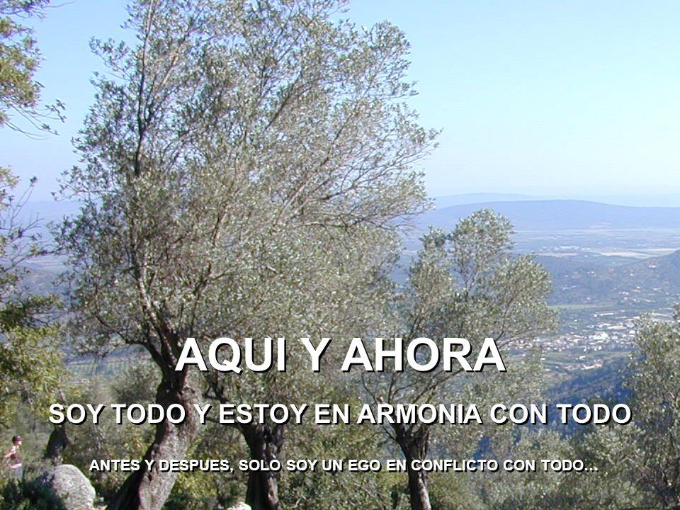 AQUI Y AHORA SOY TODO Y ESTOY EN ARMONIA CON TODO