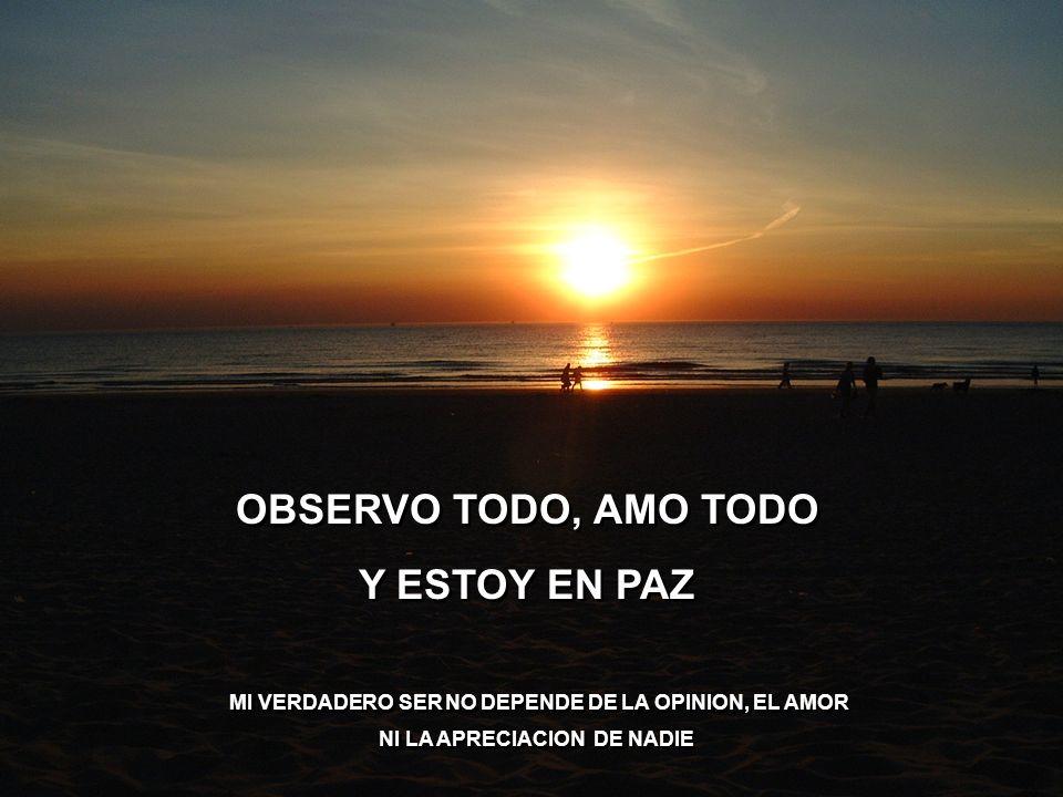 OBSERVO TODO, AMO TODO Y ESTOY EN PAZ