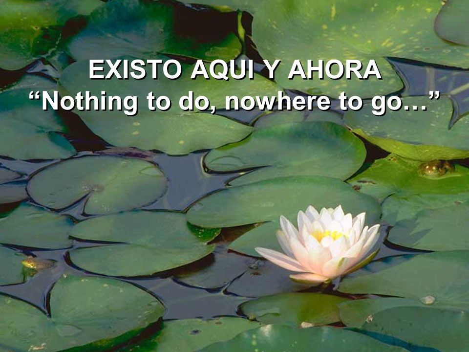 EXISTO AQUI Y AHORA Nothing to do, nowhere to go…