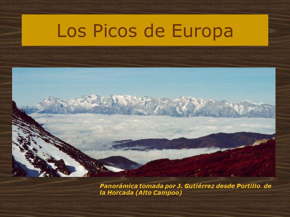Los Picos de Europa Panorámica tomada por J. Gutiérrez desde Portillo de la Horcada (Alto Campoo)