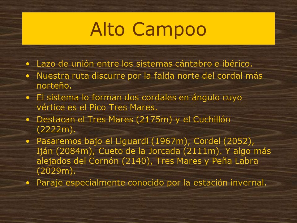 Alto Campoo Lazo de unión entre los sistemas cántabro e ibérico.