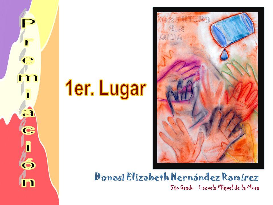 1er. Lugar Donasi Elizabeth Hernández Ramírez