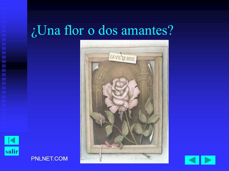 ¿Una flor o dos amantes