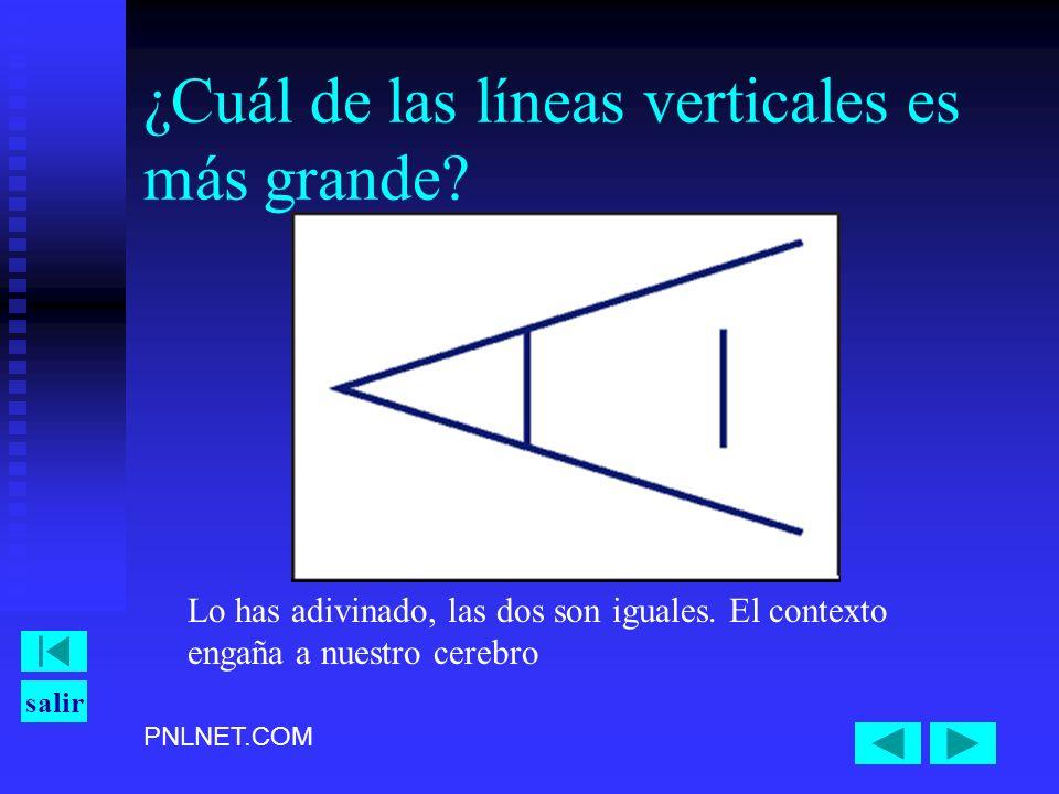¿Cuál de las líneas verticales es más grande