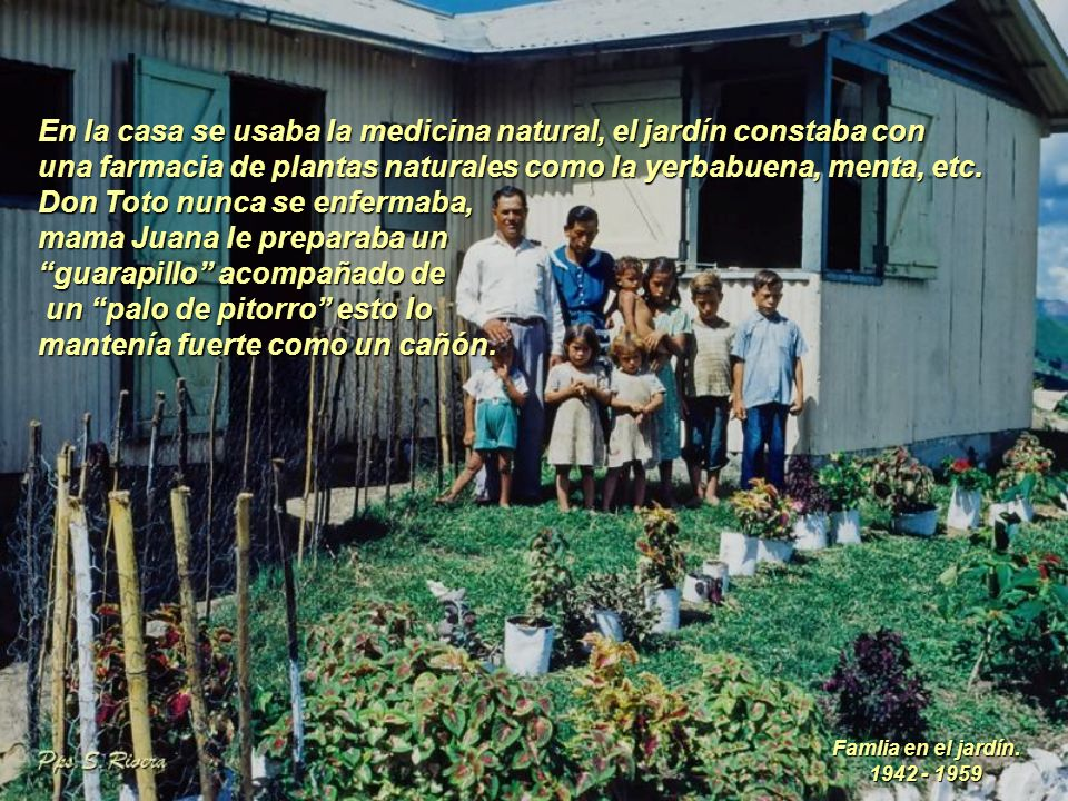 En la casa se usaba la medicina natural, el jardín constaba con