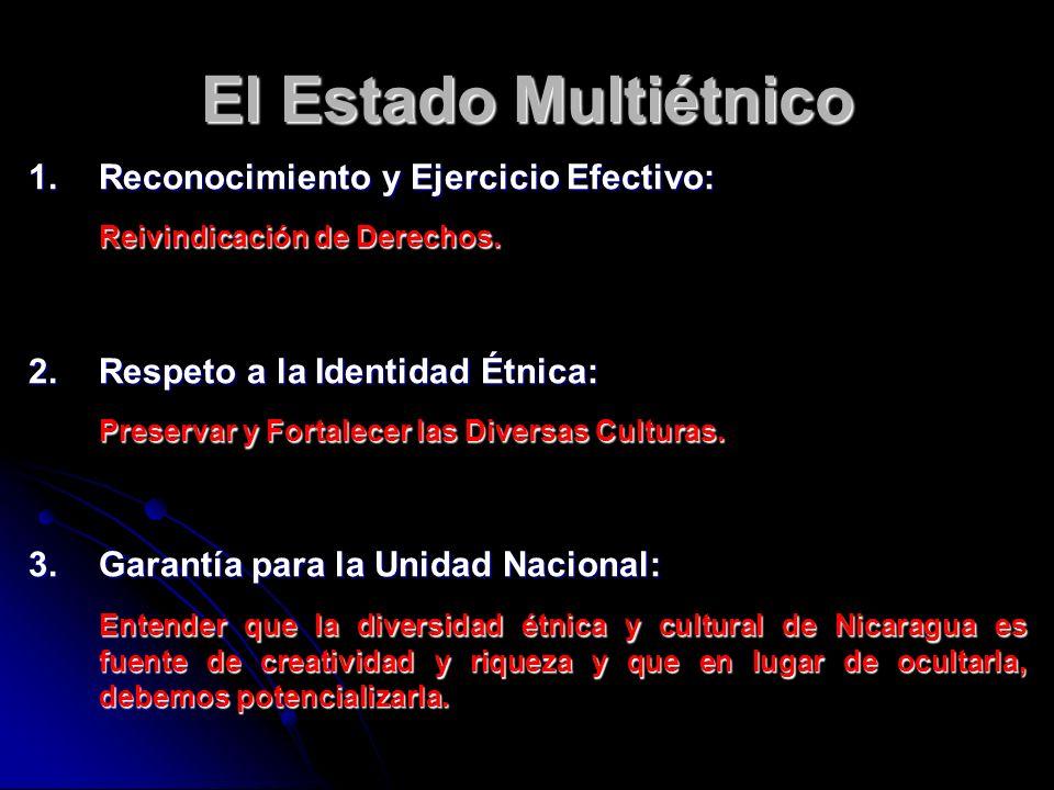 El Estado Multiétnico Reconocimiento y Ejercicio Efectivo: