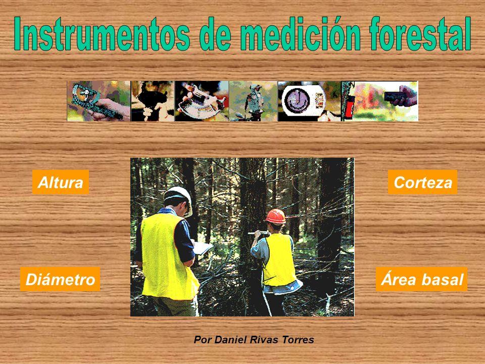 Instrumentos de medición forestal