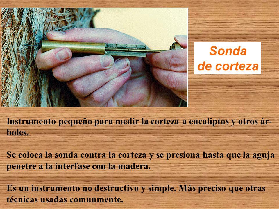 Sonda de corteza. Instrumento pequeño para medir la corteza a eucaliptos y otros ár- boles.
