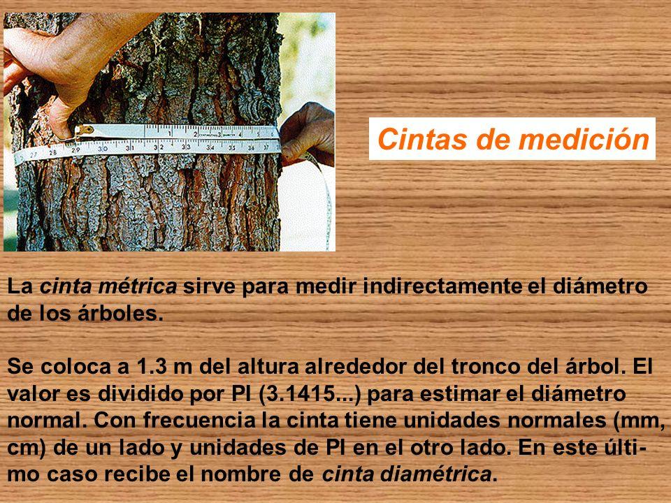 Cintas de medición La cinta métrica sirve para medir indirectamente el diámetro. de los árboles.