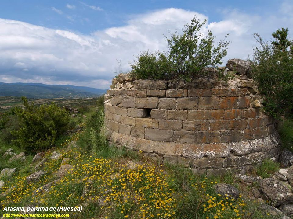Arasilla, pardina de (Huesca)