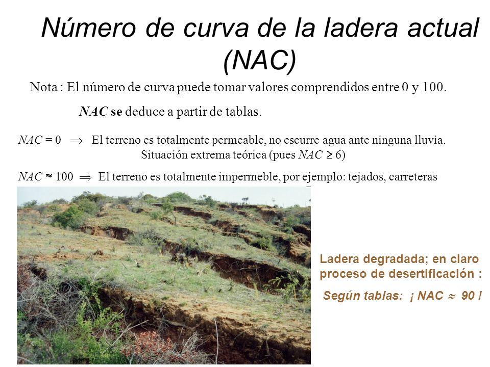 Número de curva de la ladera actual (NAC)