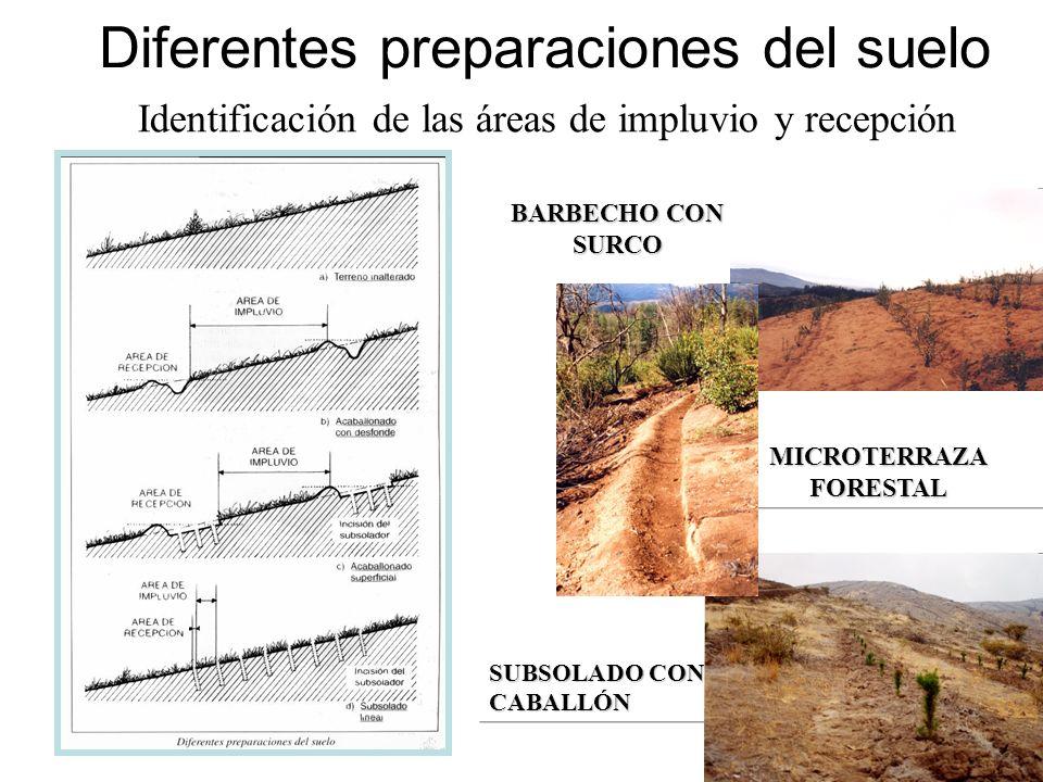 Diferentes preparaciones del suelo