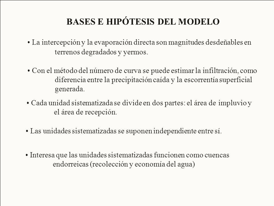 BASES E HIPÓTESIS DEL MODELO