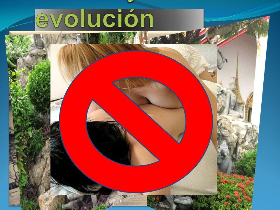 Estilos y evolución