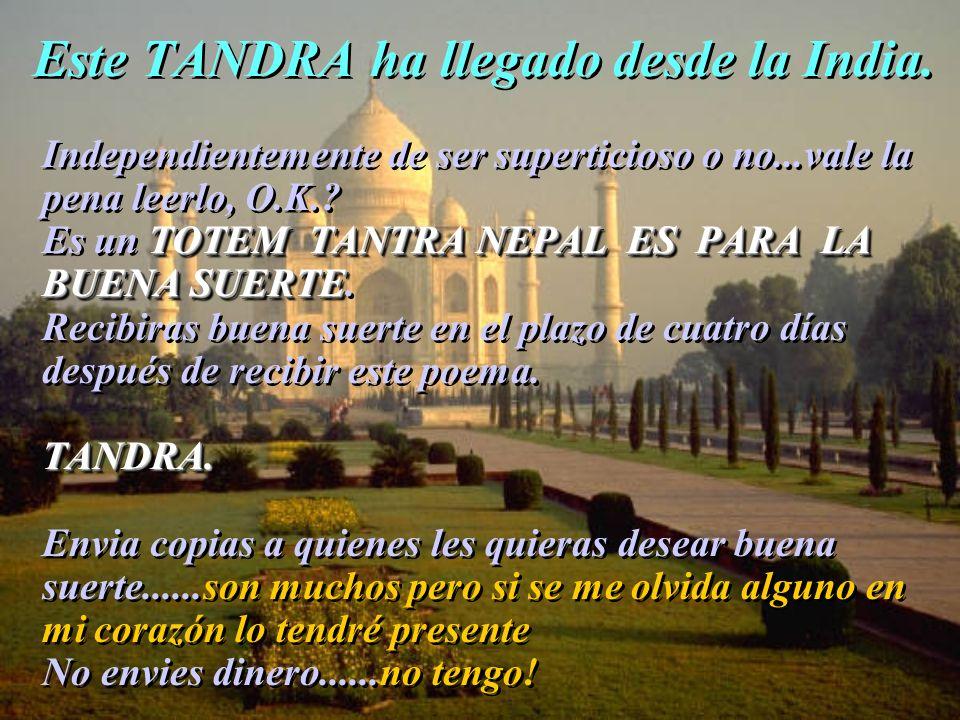 Este TANDRA ha llegado desde la India.