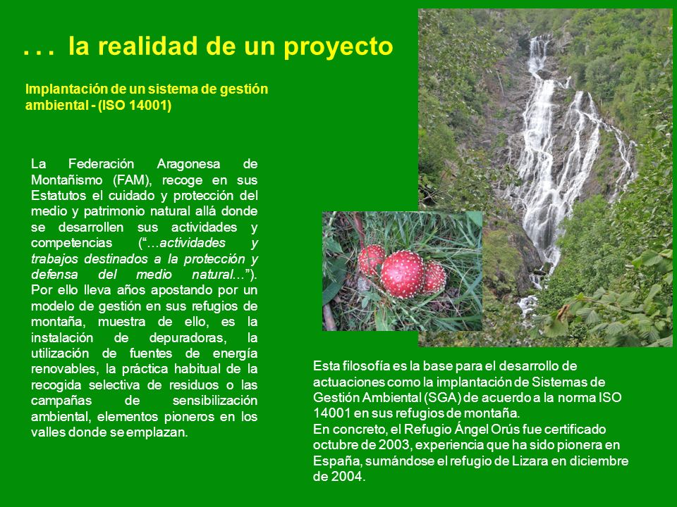 … la realidad de un proyecto