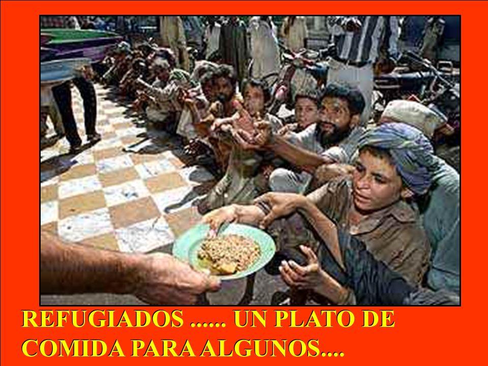 REFUGIADOS ...... UN PLATO DE COMIDA PARA ALGUNOS....