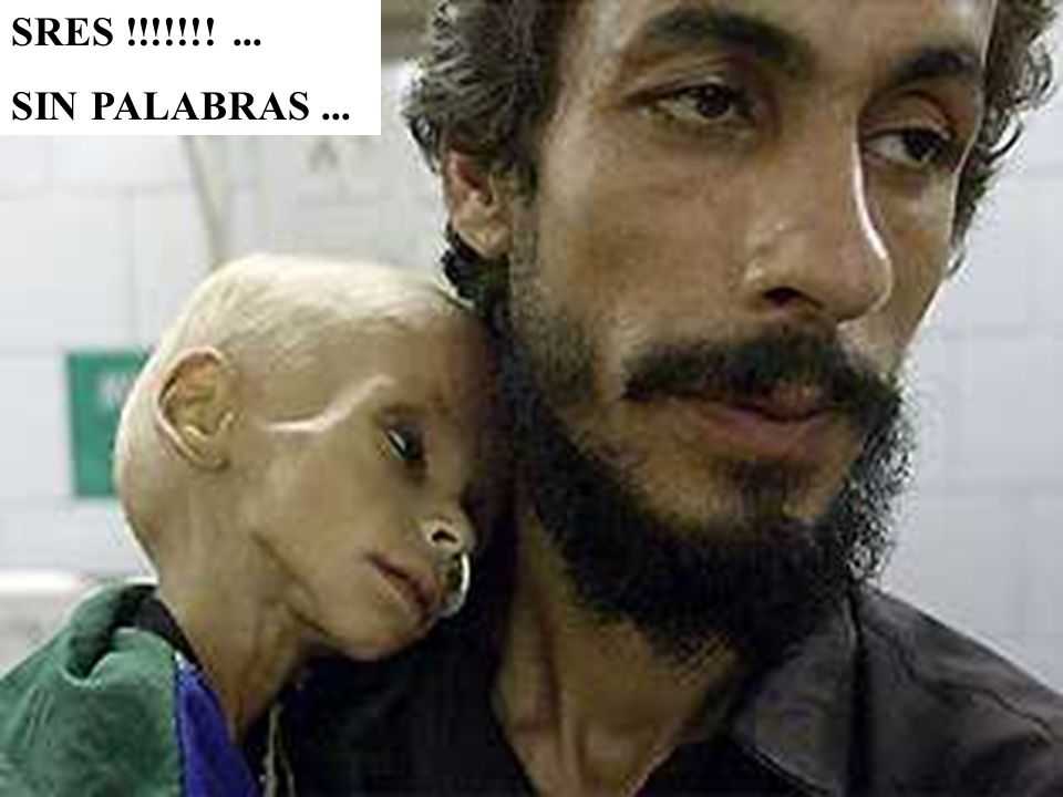 SRES !!!!!!! ... SIN PALABRAS ...