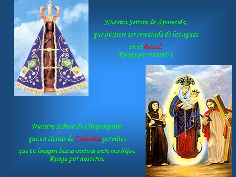 Nuestra Señora de Aparecida, que quisiste ser rescatada de las aguas