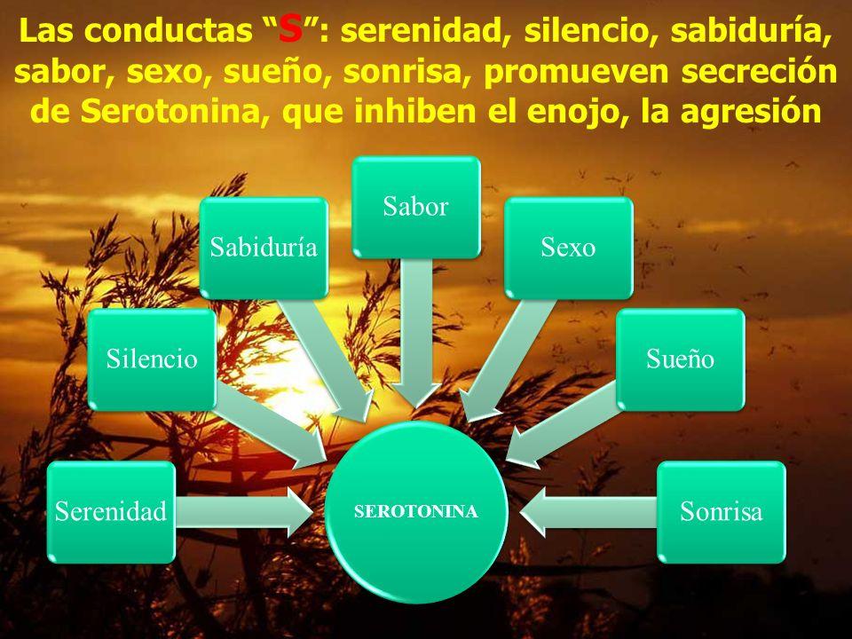 Las conductas S : serenidad, silencio, sabiduría, sabor, sexo, sueño, sonrisa, promueven secreción de Serotonina, que inhiben el enojo, la agresión