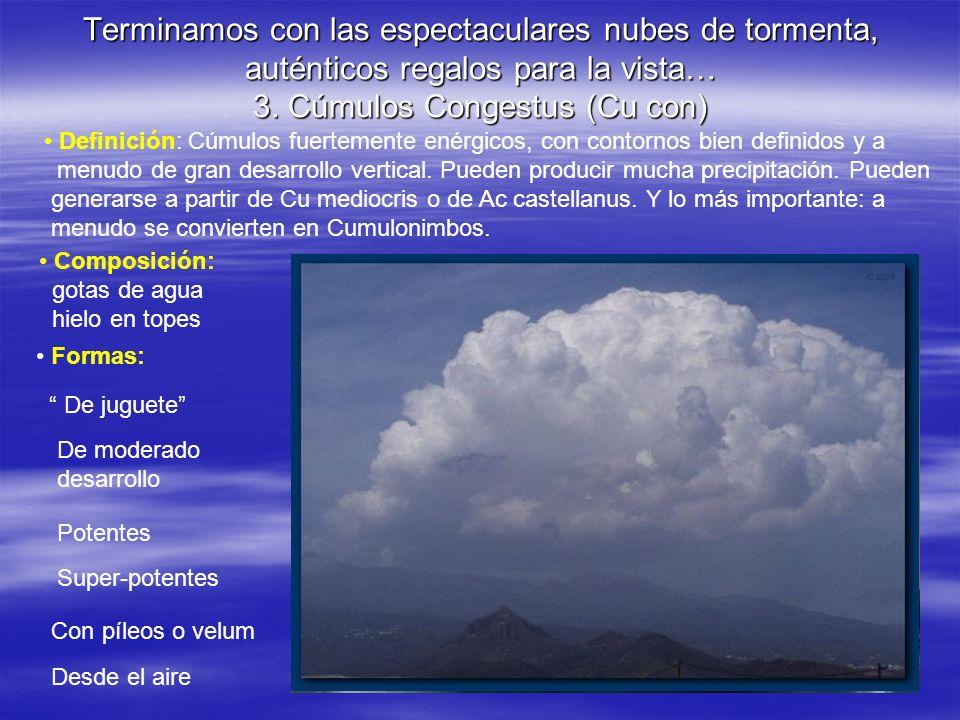 Terminamos con las espectaculares nubes de tormenta, auténticos regalos para la vista… 3. Cúmulos Congestus (Cu con)