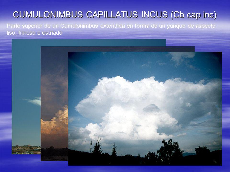 CUMULONIMBUS CAPILLATUS INCUS (Cb cap inc)