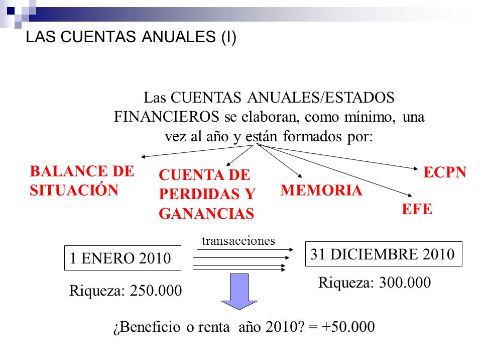 LAS CUENTAS ANUALES (I)