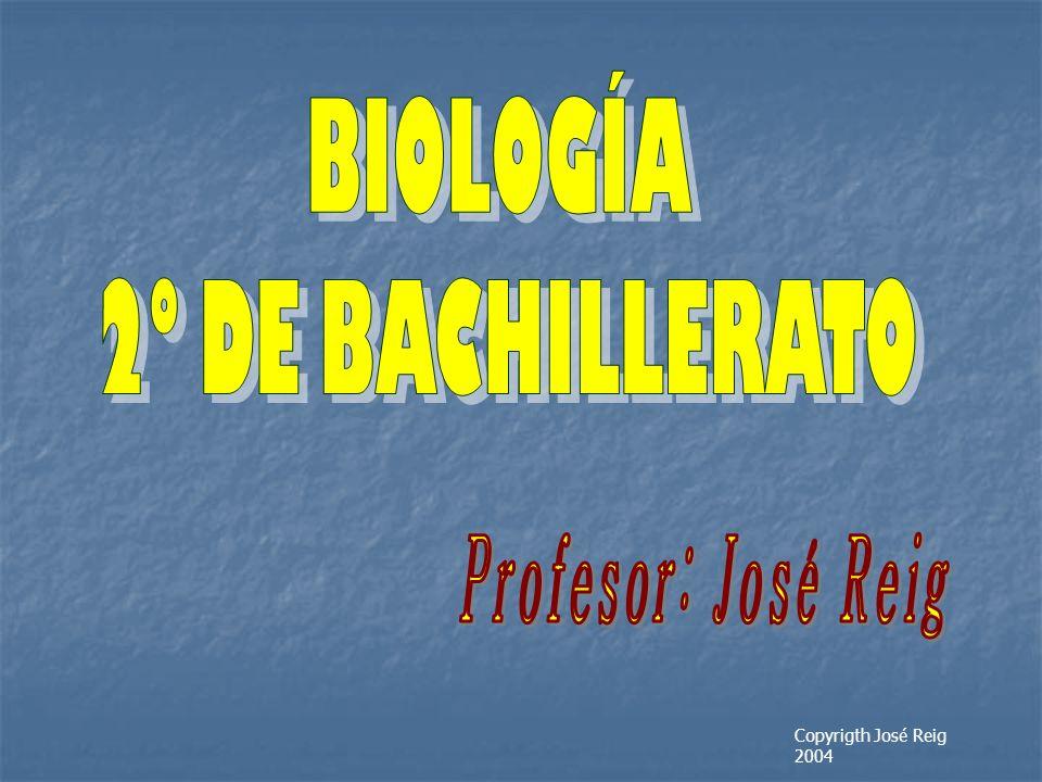 Profesor: José Reig BIOLOGÍA 2º DE BACHILLERATO