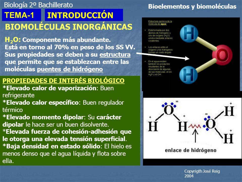 BIOMOLÉCULAS INORGÁNICAS