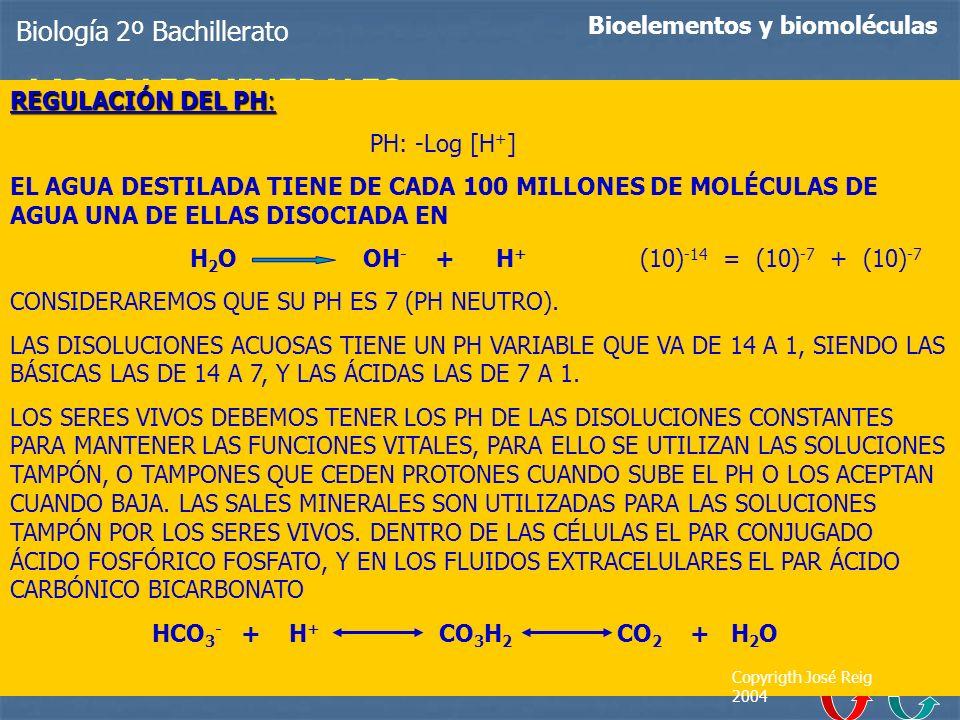 LAS SALES MINERALES Biología 2º Bachillerato
