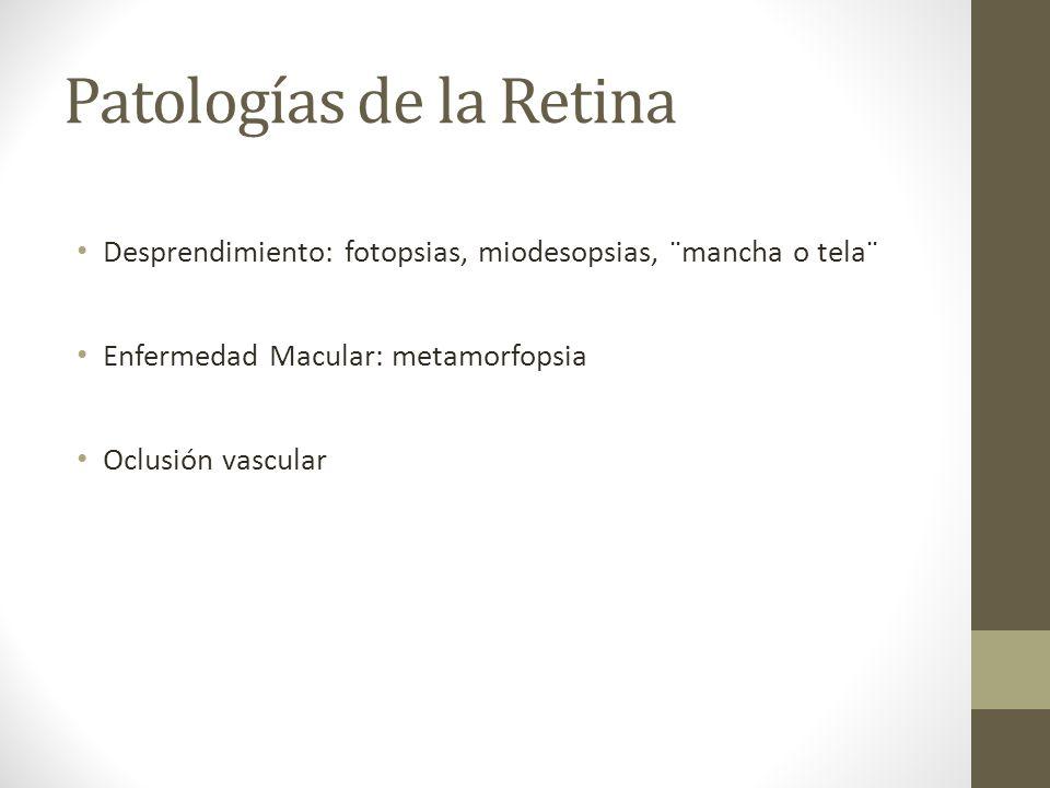 Patologías de la Retina