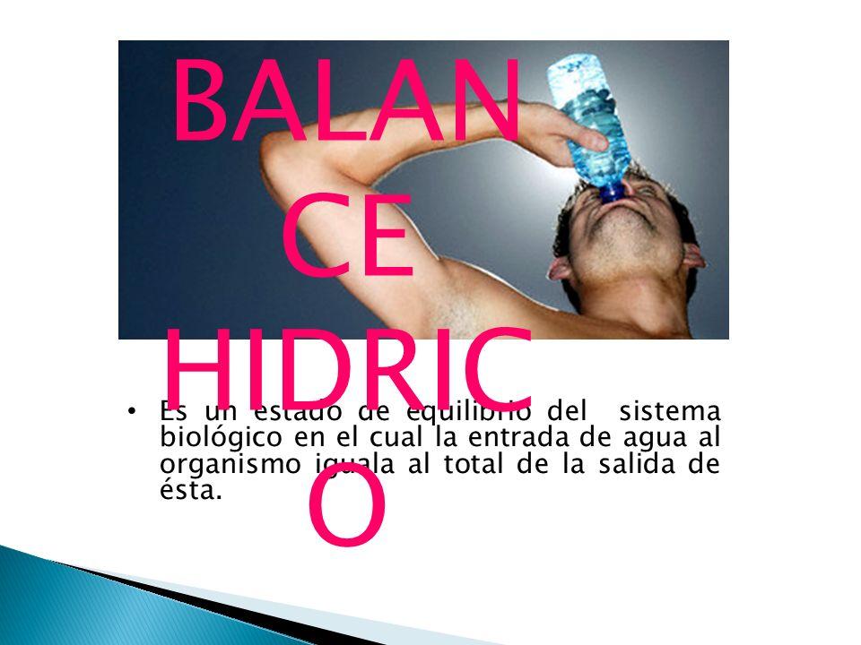 BALANCE HIDRICO Es un estado de equilibrio del sistema biológico en el cual la entrada de agua al organismo iguala al total de la salida de ésta.