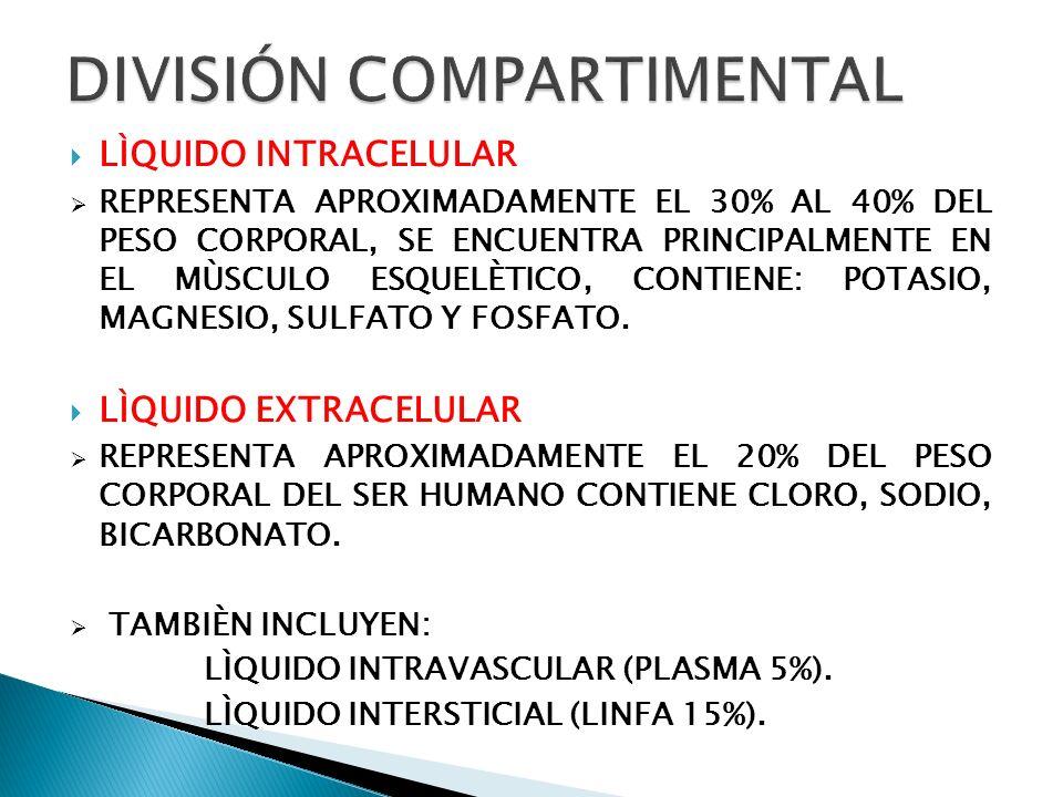 DIVISIÓN COMPARTIMENTAL