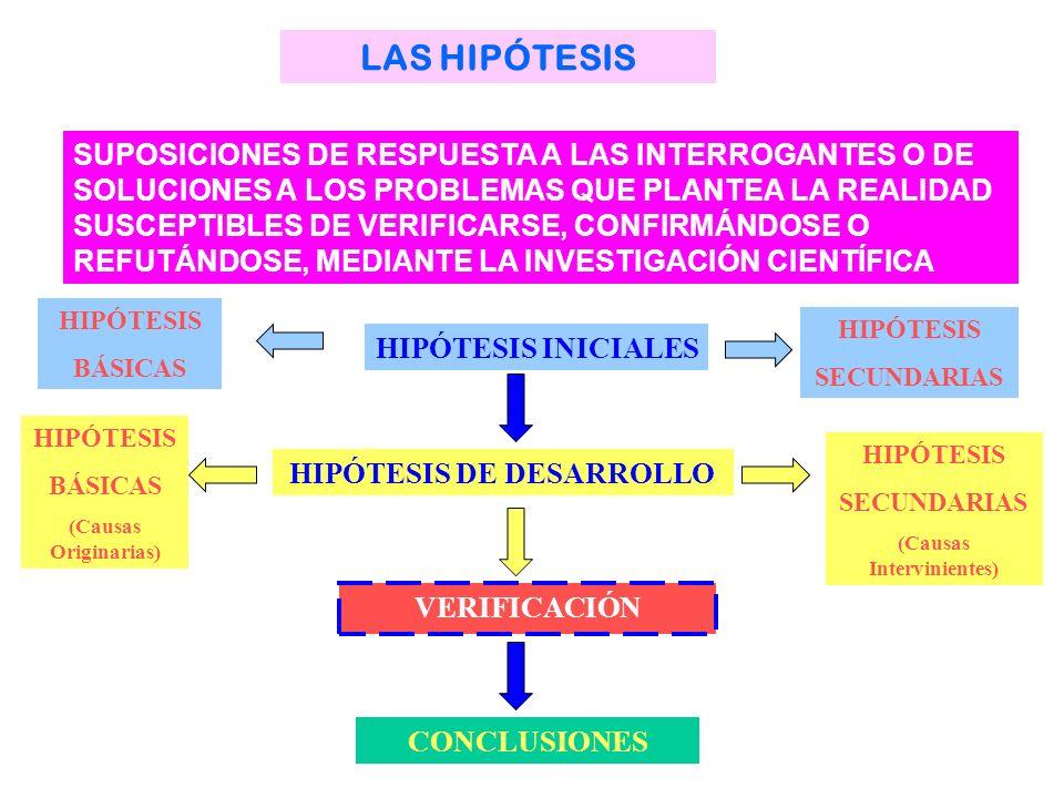 (Causas Intervinientes) HIPÓTESIS DE DESARROLLO