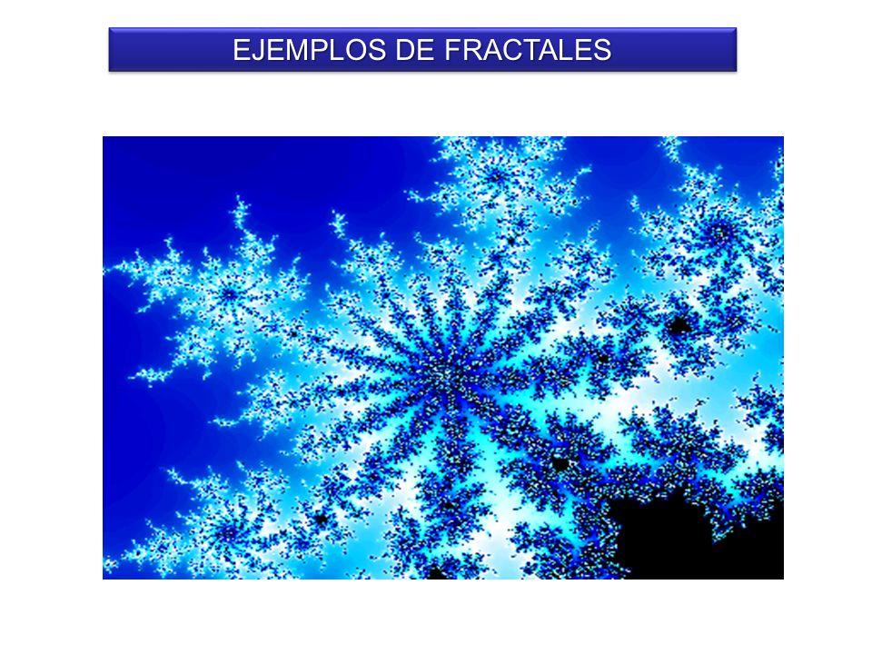 EJEMPLOS DE FRACTALES